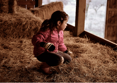 custom horse barn builders in Cumberland