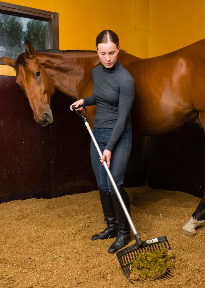 custom horse barn builders in Ohio